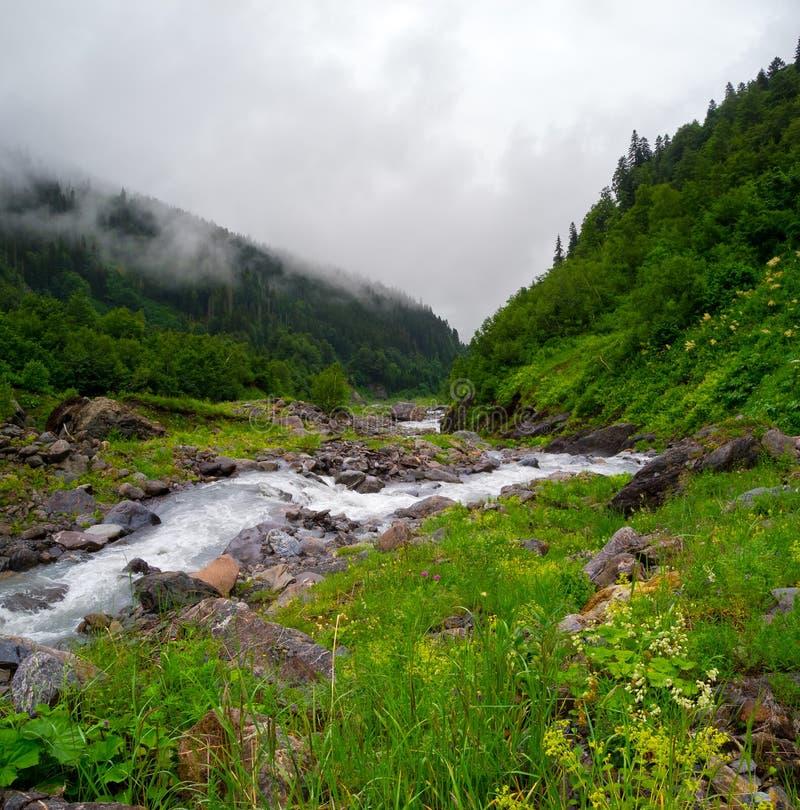 Mountain stream landscape in Svaneti royalty free stock image