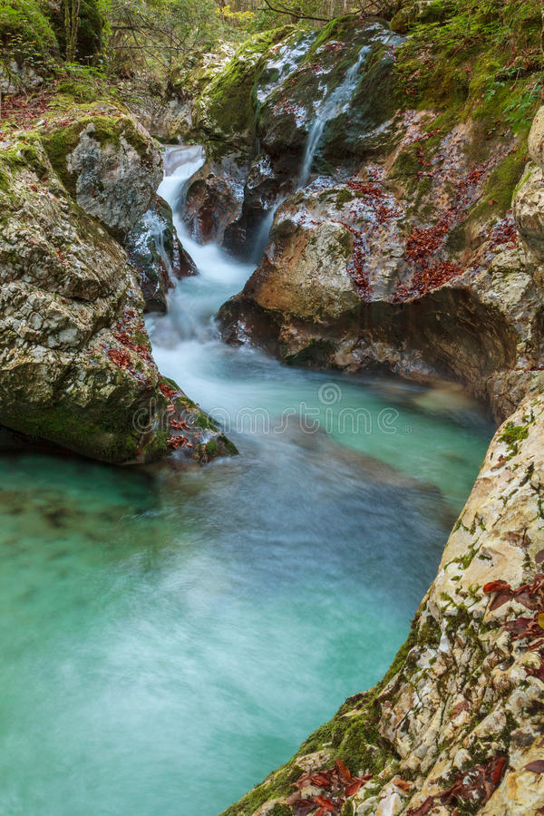 Mountain stream in the Lepena valley royalty free stock image