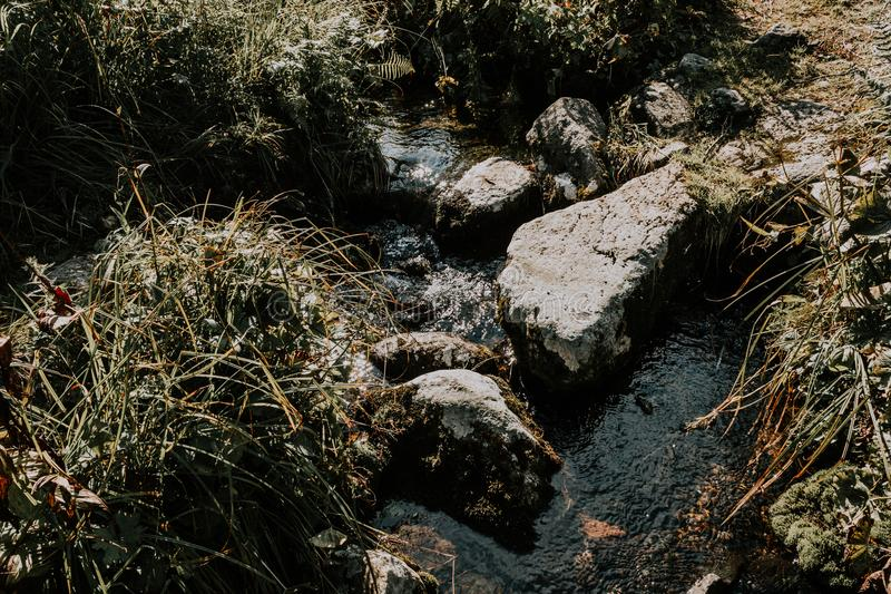 Mountain stream, a spring in the rocks royalty free stock image