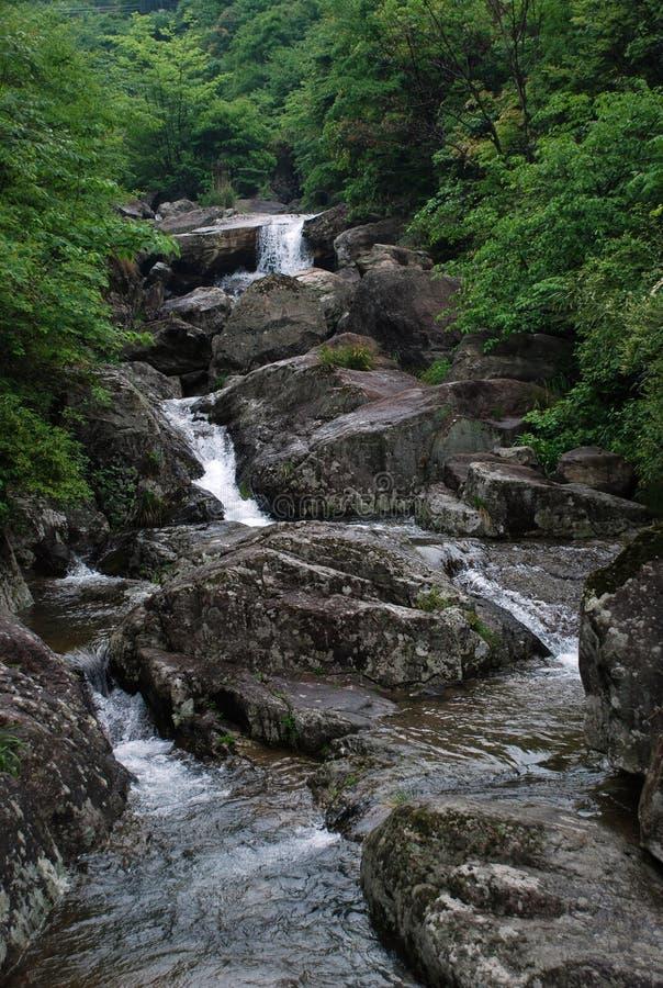 Free Mountain Streams Stock Photography - 24273132