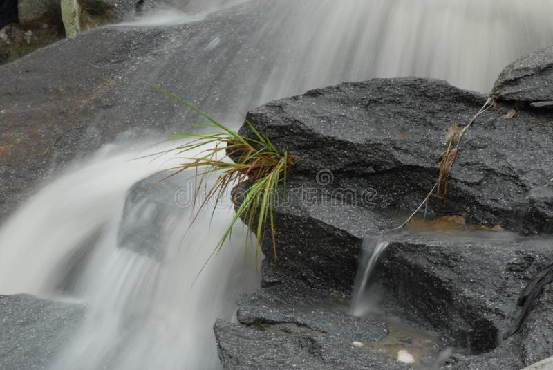 Mountain Streams. Mountain stream, gurgling water in different poses and with different expressions.Small waterfall royalty free stock images