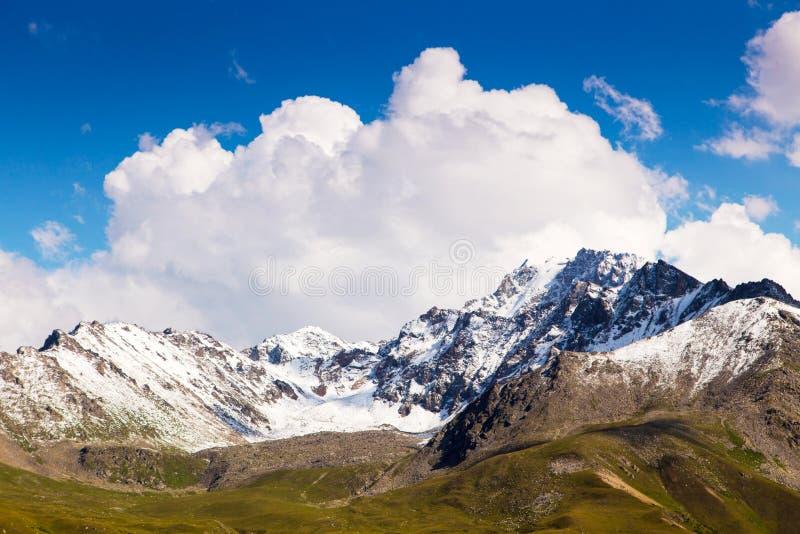 Mountain summer landscape. Snowy mountains and green grass. Peak Karakol Kyrgyzstan stock images