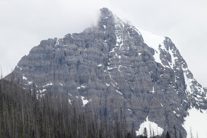 Mountain Summit In The Spring stock photography