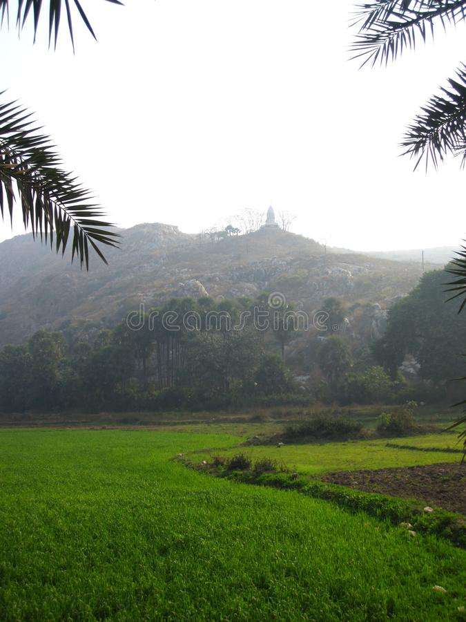 Mountain Temple with fields stock image