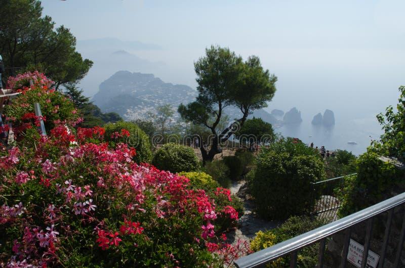 Mountain top garden royalty free stock photography