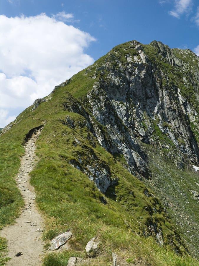 Mountain top ridge in Romania royalty free stock photography