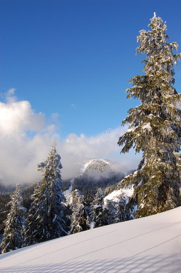 Download Mountain top in winter stock photo. Image of snow, frosty - 16834826