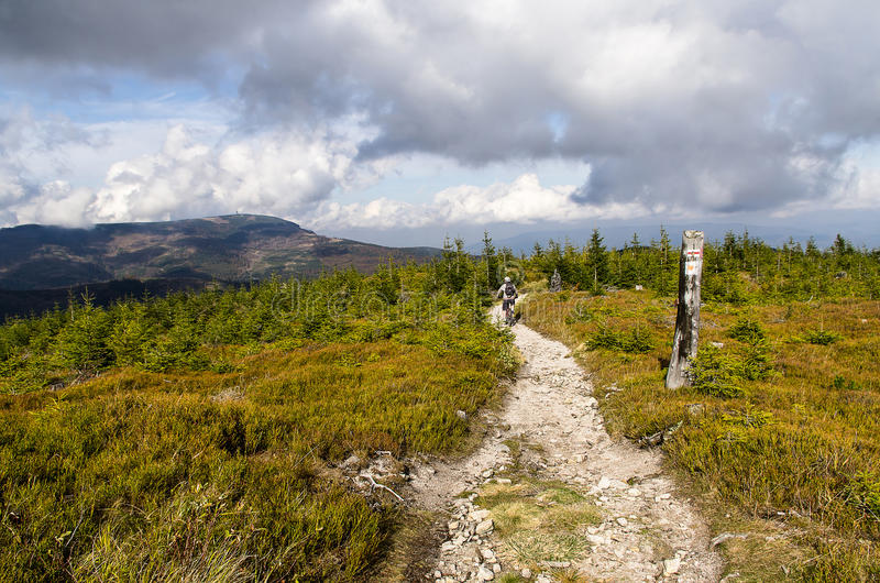 Mountain track royalty free stock images