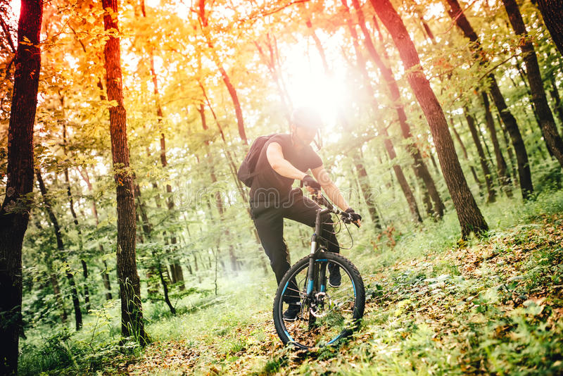 Mountain trail competition, cyclist performing on mountain bike stock image