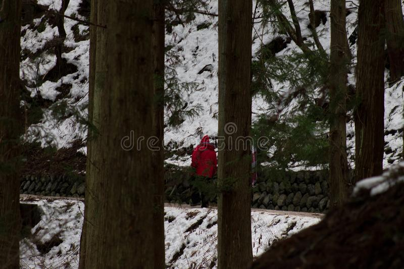 The Mountain trail covered in snow around Yudanaka, Japan.  royalty free stock photo