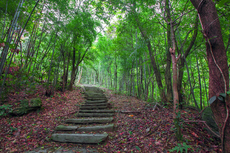 Mountain trail. This is a shot in the Huangshan Mountain in Anhui ancient Chinese Commercial Road stock photo