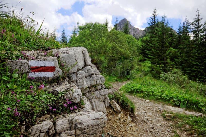 Mountain trail. In Tatras in Poland stock image