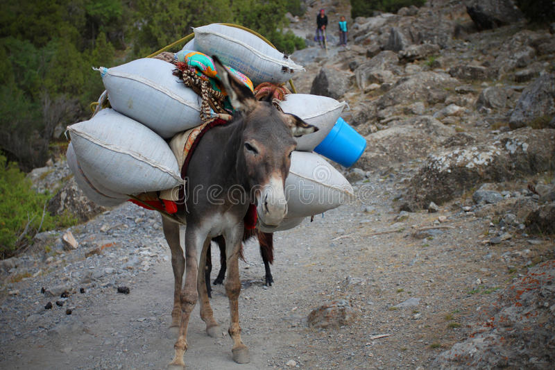 Download Mountain Transport Stock Photos - Image: 16479363
