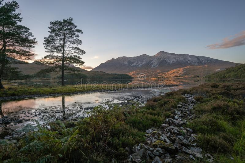 Mountain and Tree stock photos
