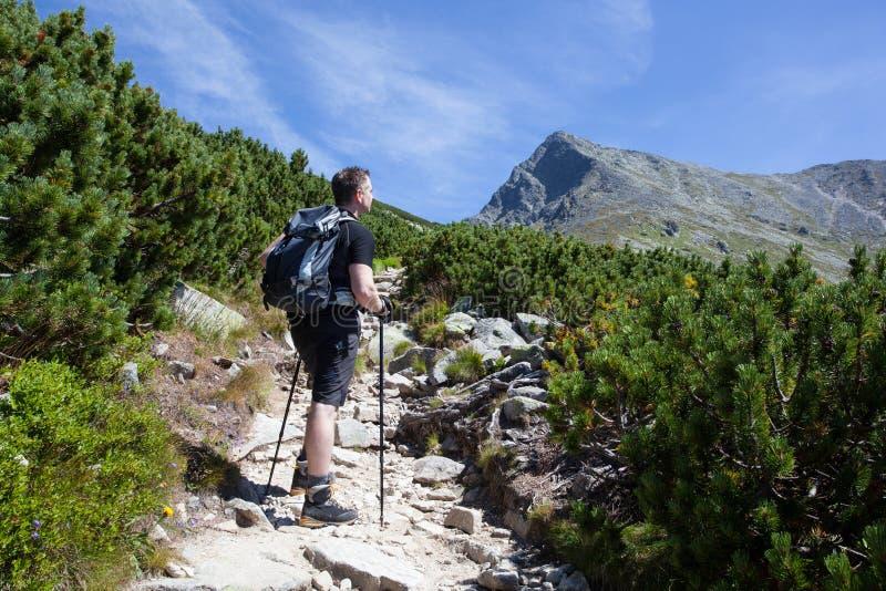 Mountain trek royalty free stock images