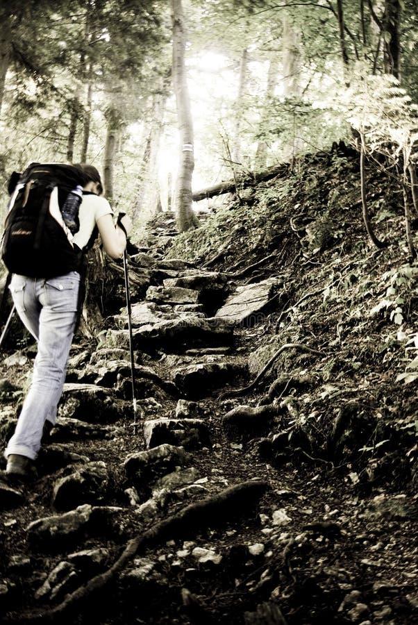 Mountain trekking royalty free stock image
