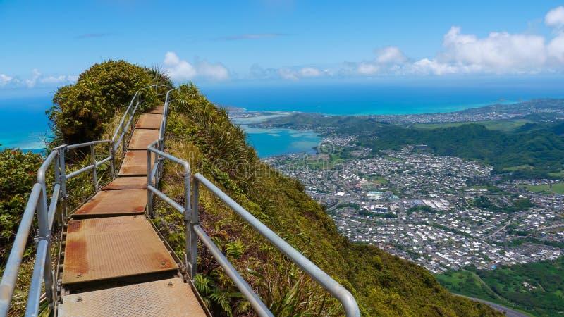 Mountain tropic trail. Haiku stairway to heaven trail hike on top of the mountain Oahu Hawaii royalty free stock photos