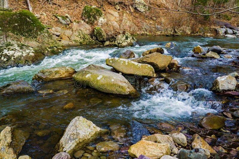 A Mountain Trout Stream in the Blue Ridge Mountains. A mountain trout stream located in the Blue Ridge Mountains of Botetourt County, Virginia, USA stock images