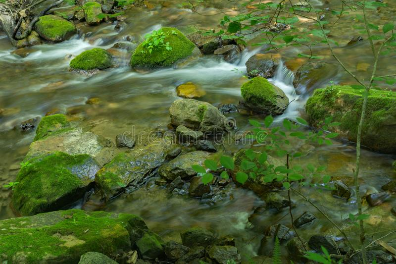 Mountain Trout Stream in the Jefferson National Forest. Mountain trout stream located in the Rich Patch Mountains, Jefferson National Forest, Virginia, USA stock photo