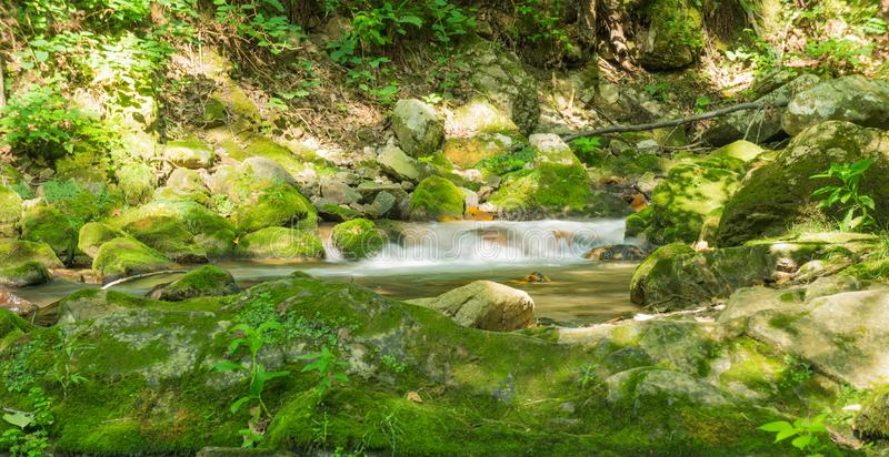 Mountain Trout Stream in the Jefferson National Forest. Mountain trout stream located in the Rich Patch Mountains, Jefferson National Forest, Virginia, USA stock photography