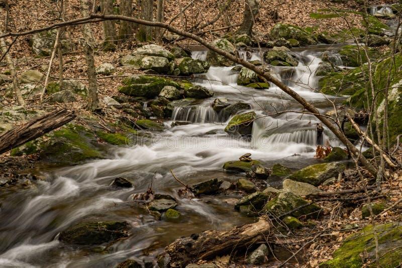 Mountain Trout Stream. Wild mountain trout stream located in the Blue Ridge Mountains of Virginia, USA royalty free stock photo