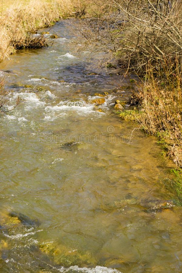 A Mountain Trout Stream. Wild mountain trout stream located in the mountains of Highland County, Virginia, USA royalty free stock image