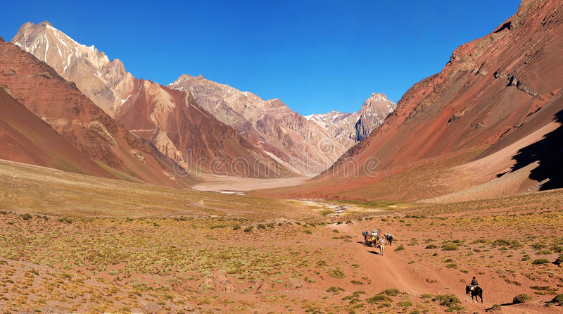 Mountain valley panorama in Argentina. Panorama of a beautiful mountain valley as seen in Aconcagua National Park, Argentina, South America royalty free stock photography