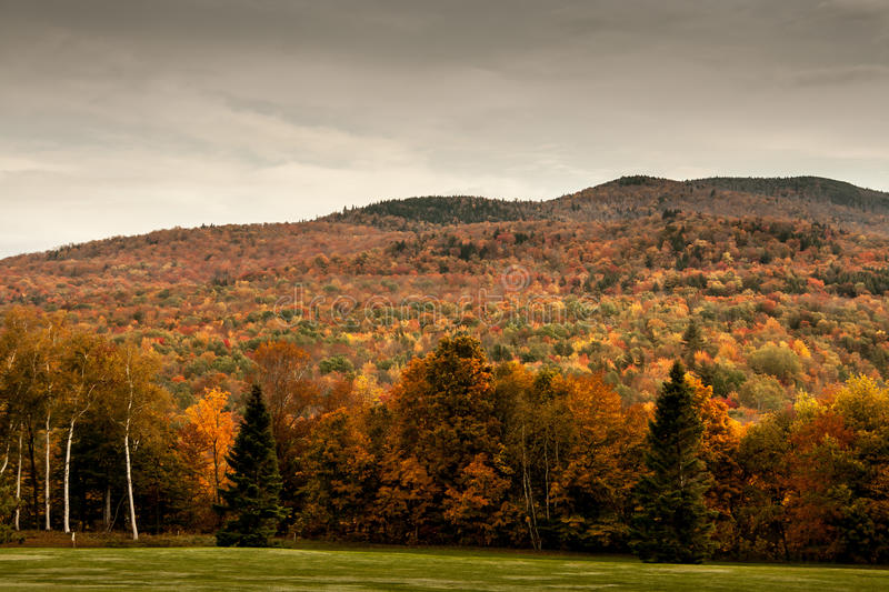 Mountain in Vermont. Fall foliage on a mountain in Vermont stock photo