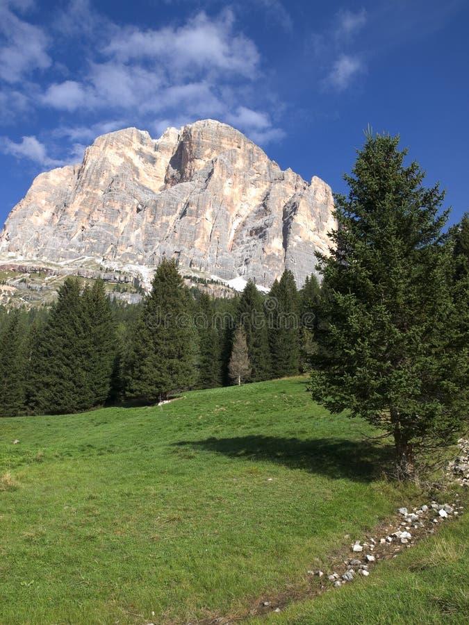 Download Mountain view stock image. Image of austria, stone, tree - 26859275