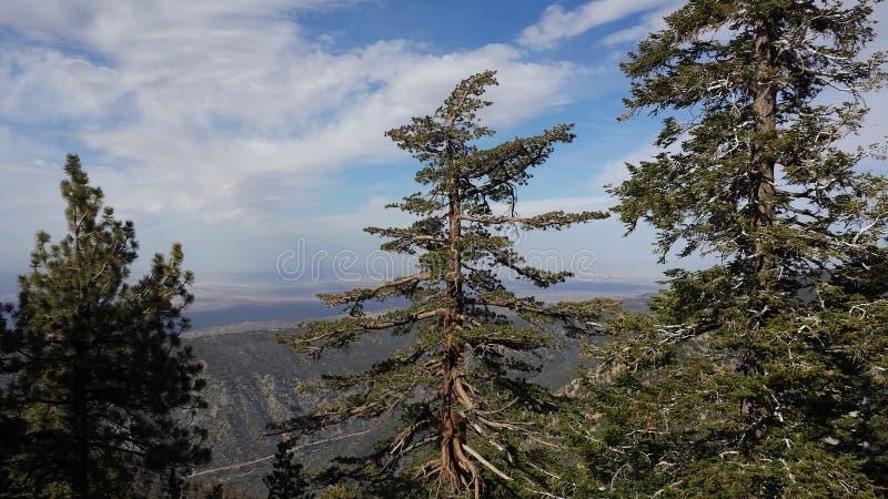 Mountain View royalty-vrije stock foto's