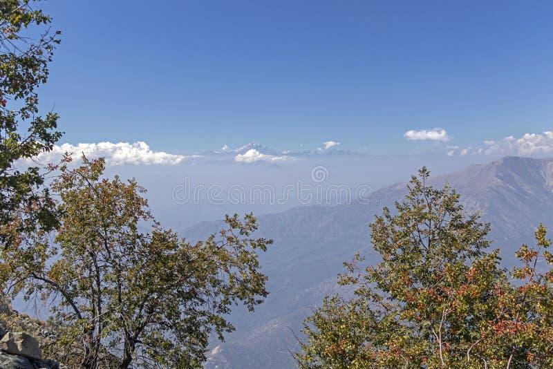 Mountain View Andes e vegeta??o de Aconcagua no dia claro no parque de Campana National do La no Chile central imagens de stock royalty free