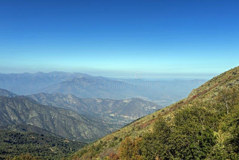 Mountain View Andes e vegeta??o de Aconcagua no dia claro no parque de Campana National do La no Chile central fotos de stock