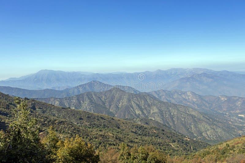 Mountain View Andes e vegeta??o de Aconcagua no dia claro no parque de Campana National do La no Chile central fotografia de stock