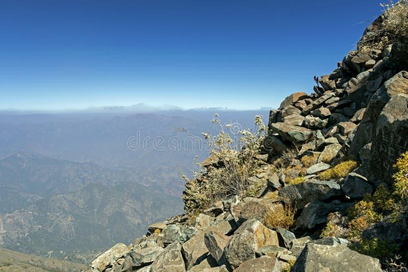 Mountain View Andes e vegeta??o de Aconcagua no dia claro no parque de Campana National do La no Chile central fotografia de stock royalty free