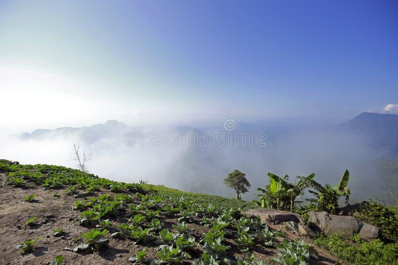 Mountain View avec le chemin chez Phu Tubberk, point de repère de touristes de province de Phetchabun en Thaïlande image stock