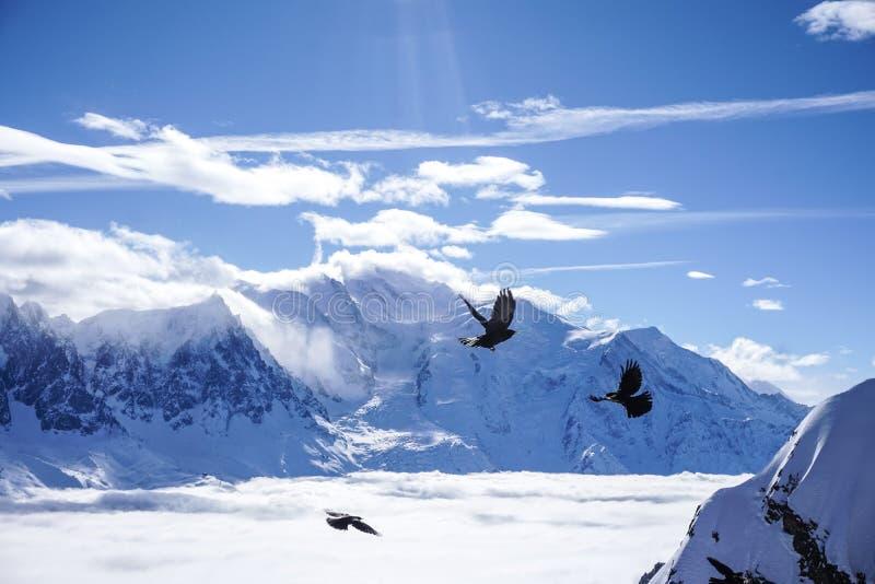 Mountain View a Chamonix-Mont-Blanc immagini stock