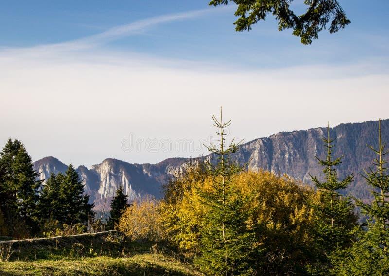 Mountain View Cheile Gradistei стоковая фотография