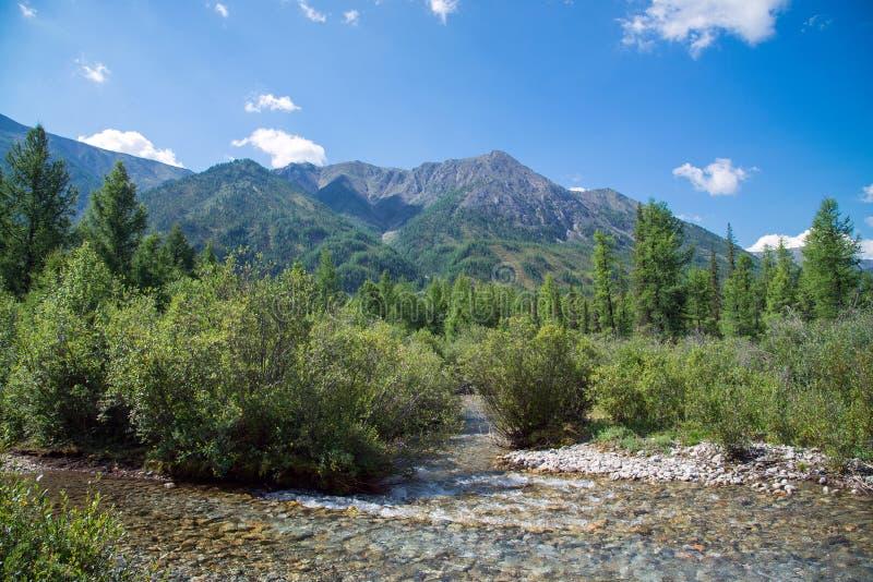 Mountain View con el pequeño río en día de verano delantero, soleado Sayan del este, Buriatia, Rusia fotografía de archivo libre de regalías