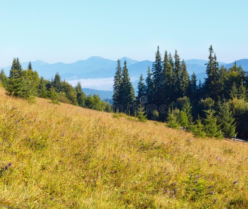 Mountain View d'été carpathien, Ukraine image stock