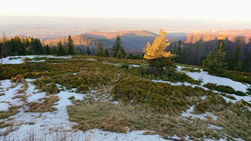 Mountain View d'hiver photographie stock libre de droits