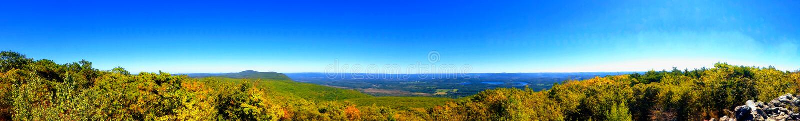 Mountain View d'ours image libre de droits