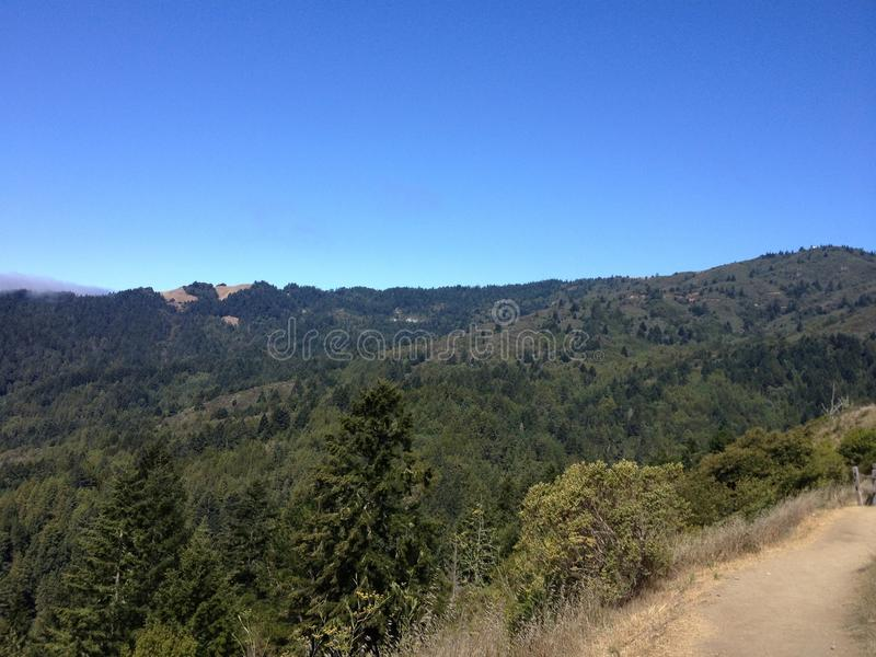 Mountain View de mountian coberto em árvores arborizadas fotografia de stock