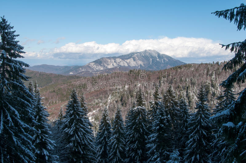 Mountain View de Postavaru imagens de stock royalty free