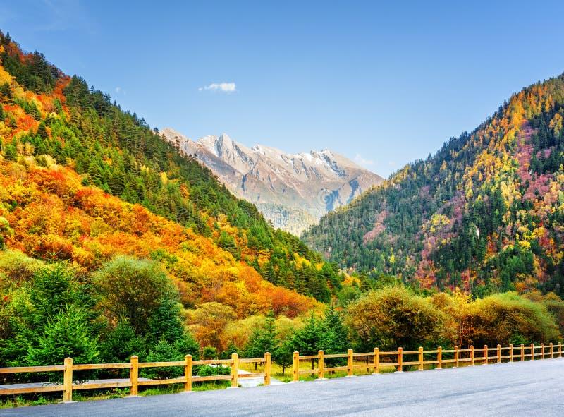 Mountain View del camino en la reserva de naturaleza de Jiuzhaigou, China fotografía de archivo libre de regalías