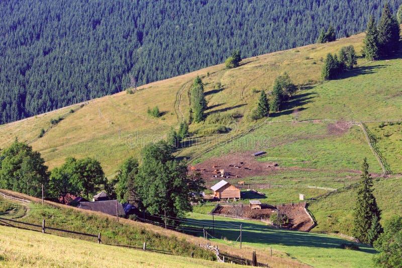 Mountain View di estate (carpatico, Ucraina) immagini stock libere da diritti