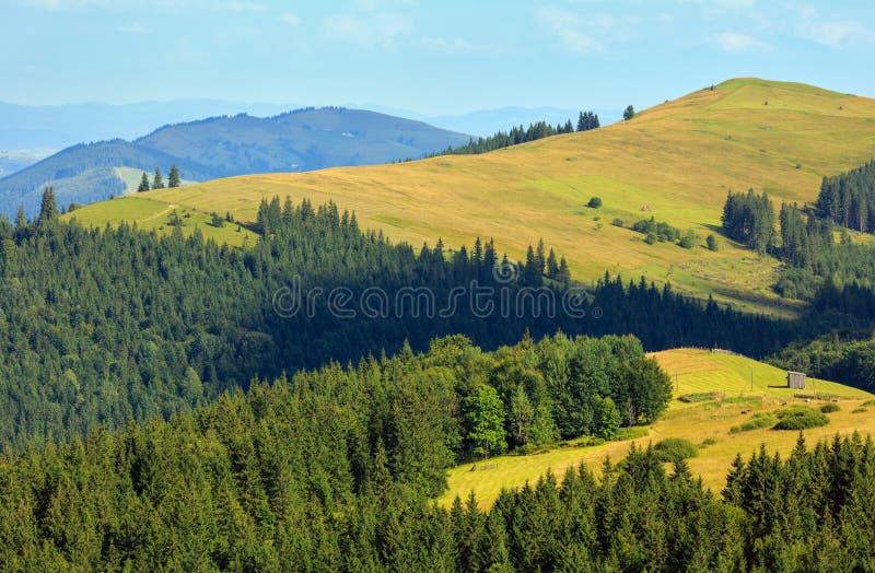 Mountain View di estate (carpatico, Ucraina) fotografia stock