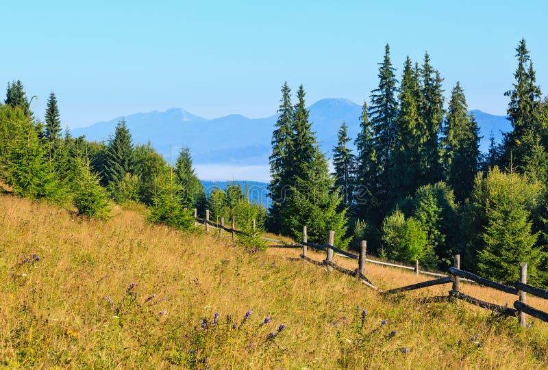 Mountain View di estate carpatico, Ucraina immagini stock