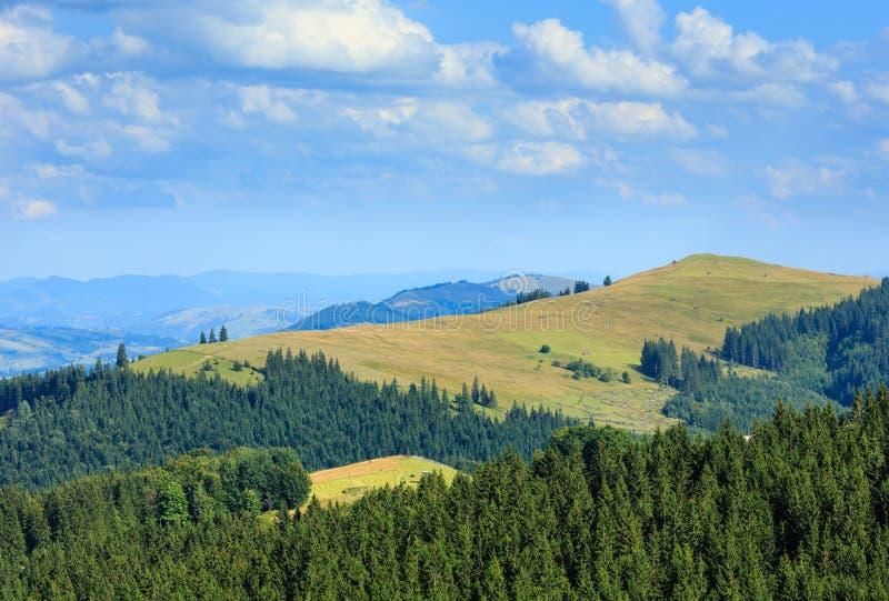Mountain View di estate carpatico, Ucraina fotografia stock