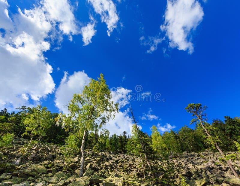 Mountain View di Ihrovets di estate (carpatico, Ucraina) fotografia stock