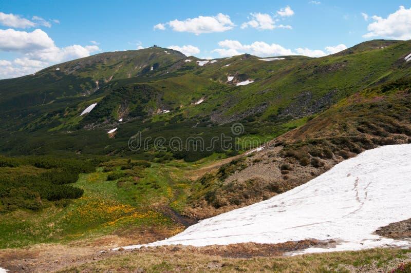 Mountain View do verão foto de stock